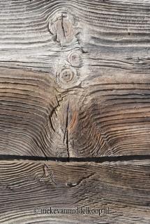 dancing in wood_100x150cm