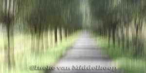 Landscape impr.02_Hollandse Biesbosch