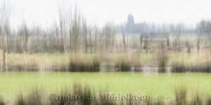 landscape impr.01_de Wieden-k